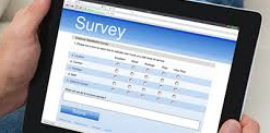 online job opportunities like surveys