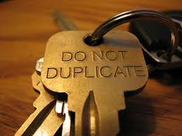 six figure mentors should not allow duplication, do not duplicate
