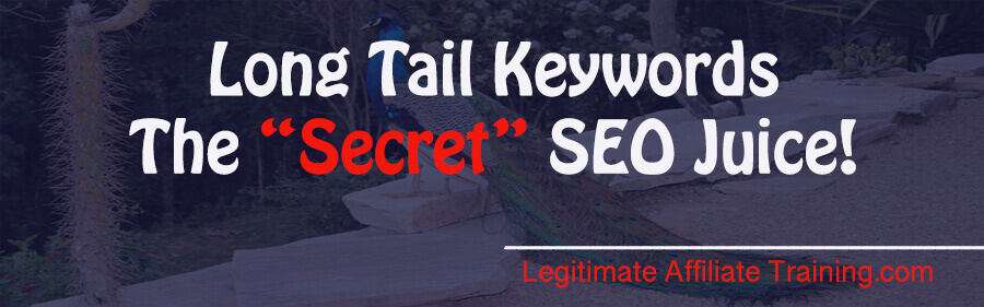 WHAT'S A LONG TAIL KEYWORD