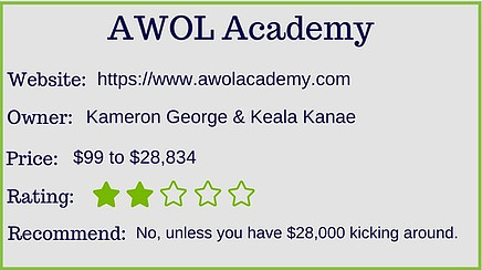 an awol academy review overall