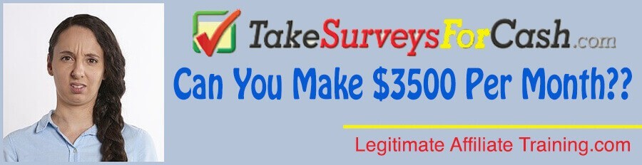 What Is Take Surveys For Cash About